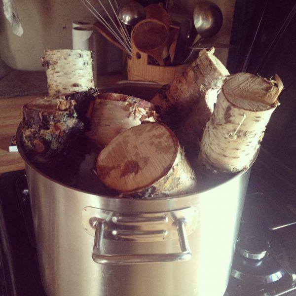 Koking av bjørkekubber for å få av nevra. Det virket!