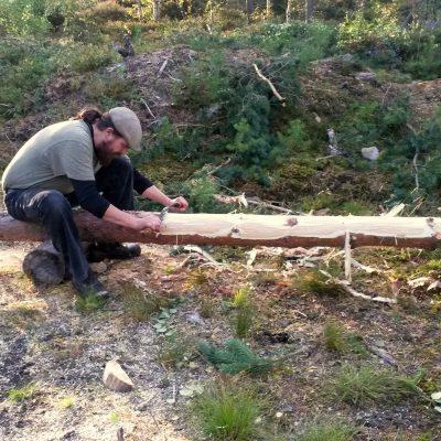 Det ene treet var stort nok til å bli en takås på et lite bygg :)