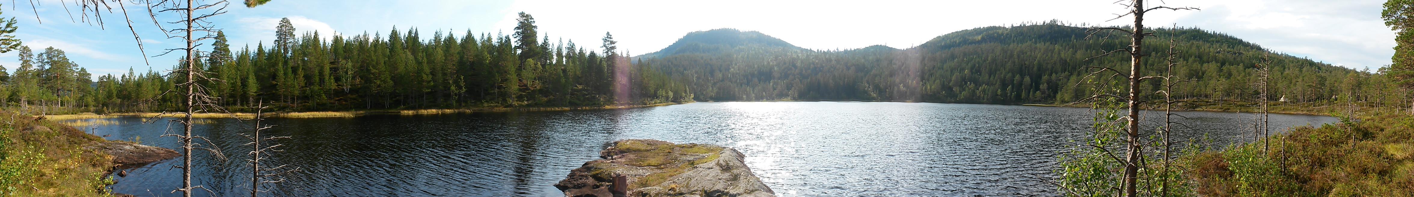 Panorama over Damtjønna